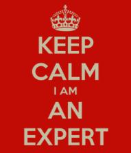 keep-calm-i-am-an-expert-257x300