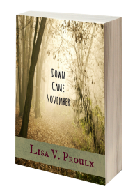 Down Came November 3D book cover