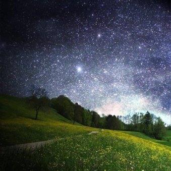 NIGHT SKY FULL OF STARS