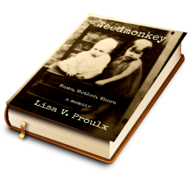 Weedmonkey old book 3D