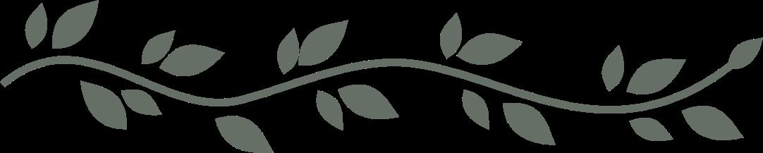 Divider PNG